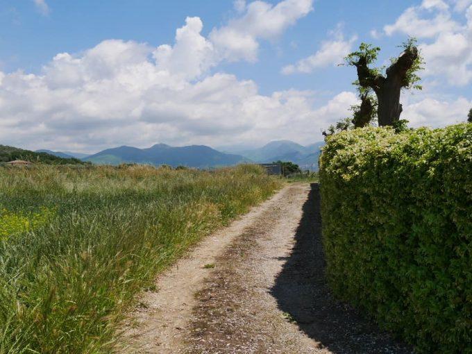 Terreno Edificabile in Vendita a Montecorvino Pugliano(SA)